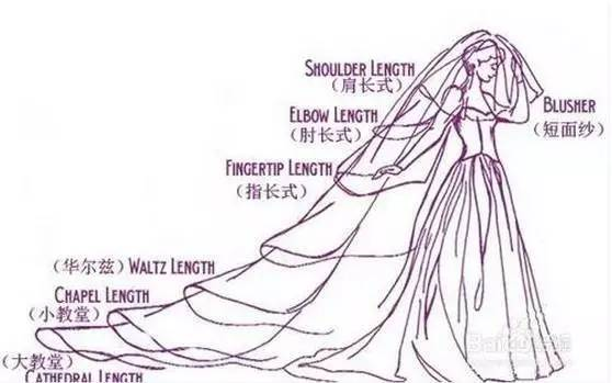 校园主题婚礼手绘图