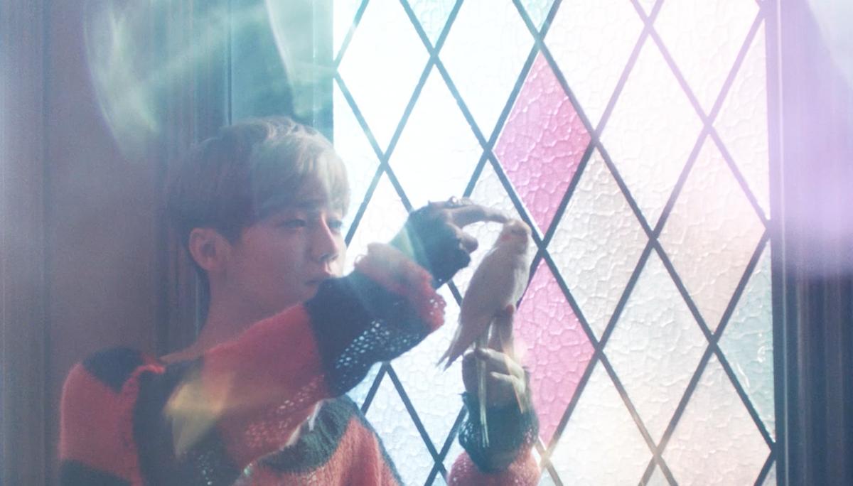 【鹿晗】他是银幕人气偶像 用电影手笔制作出一部音乐MV - 狐狸·梦见乌鸦 - 埋骨之地