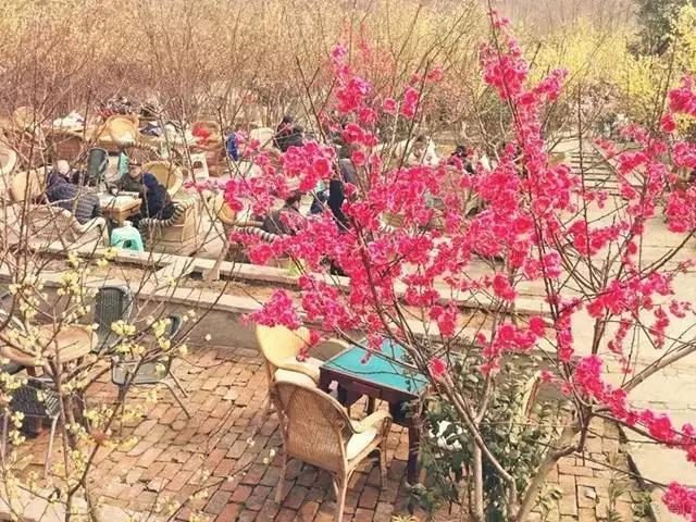 --新兴镇--万安镇(东山森林公园)--华阳--科华路--九眼桥图片