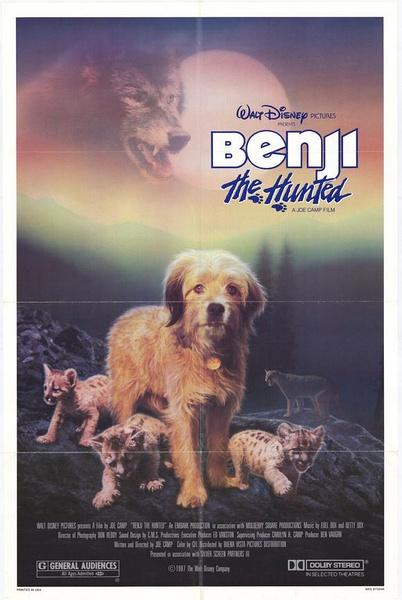《一条狗的使命》每只宠物,都是你命中注定的精灵 - 狐狸·梦见乌鸦 - 埋骨之地