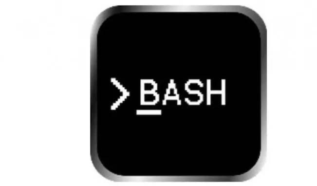 编写快速安全Bash脚本的建议