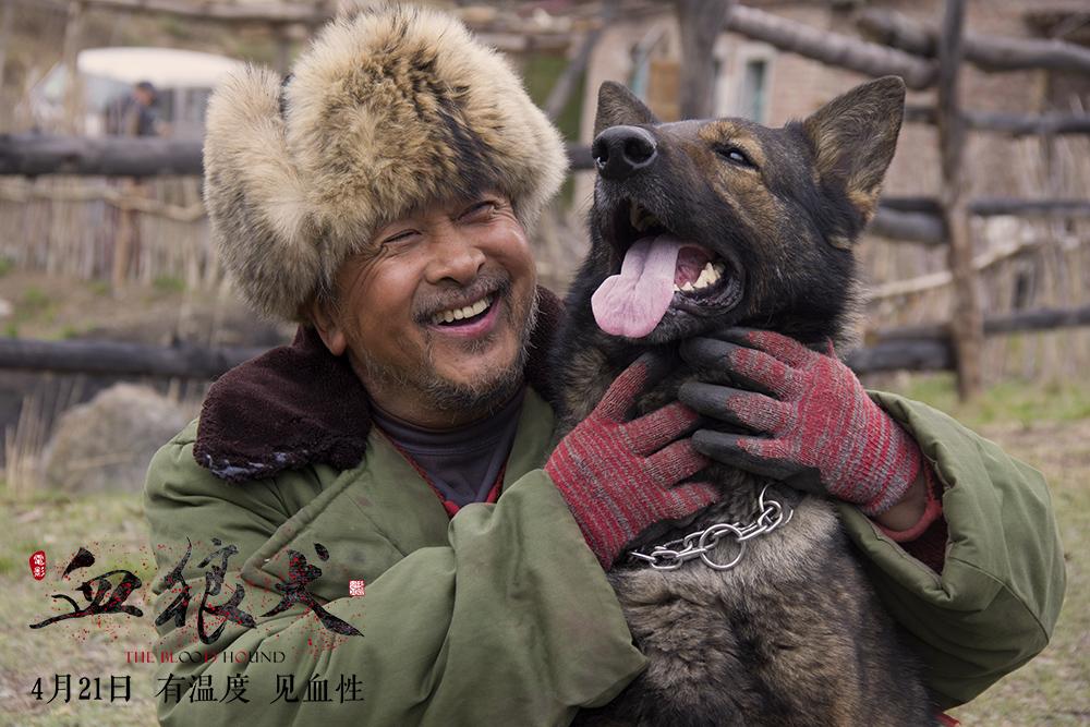 """《血狼犬》瞧你那副""""狗样子"""" - 狐狸·梦见乌鸦 - 埋骨之地"""
