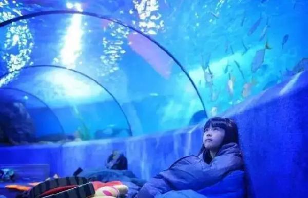 今天   >汉海海洋公园开业啦<</p>     重庆汉海海洋公园由新加坡投资,隶属于汉海海洋世界集团。项目坐落于重庆市巴南区龙洲湾,紧临轨道交通3号线学堂湾站。    海洋公园将开放雨林馆、大洋馆两大元素场馆,参观面积23,000平方米,展示生物数百种,共计5万余尾。场馆包含360全景珊瑚礁、银河水母馆、潘多拉广场 、海神殿等12个极具特色的主题展区。    >小伙伴们等不及了<</p>   重庆汉海海洋公园场馆简介   Andove