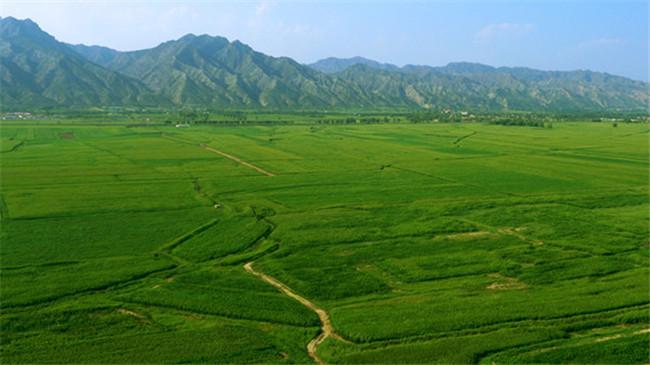 呼市土左旗大青山占地38.2公顷的大型生态观光园开工建设