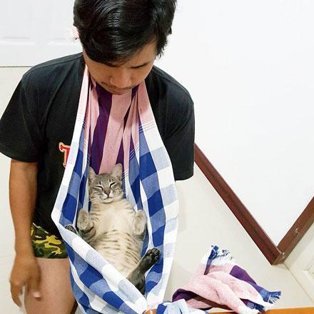 男友犯错了 女友就这样用猫惩罚男友 这猫太舒服啦!-图片2