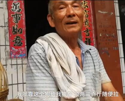 73岁的腿病大爷骑三轮车骑不太动了 忠狗的举动让人泪目!-图片4