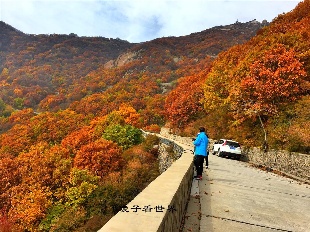 自然风景区百花山凤凰岭