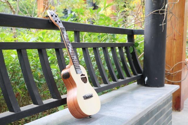Populele智能尤克里里-咪蒙 培养儿童乐器...