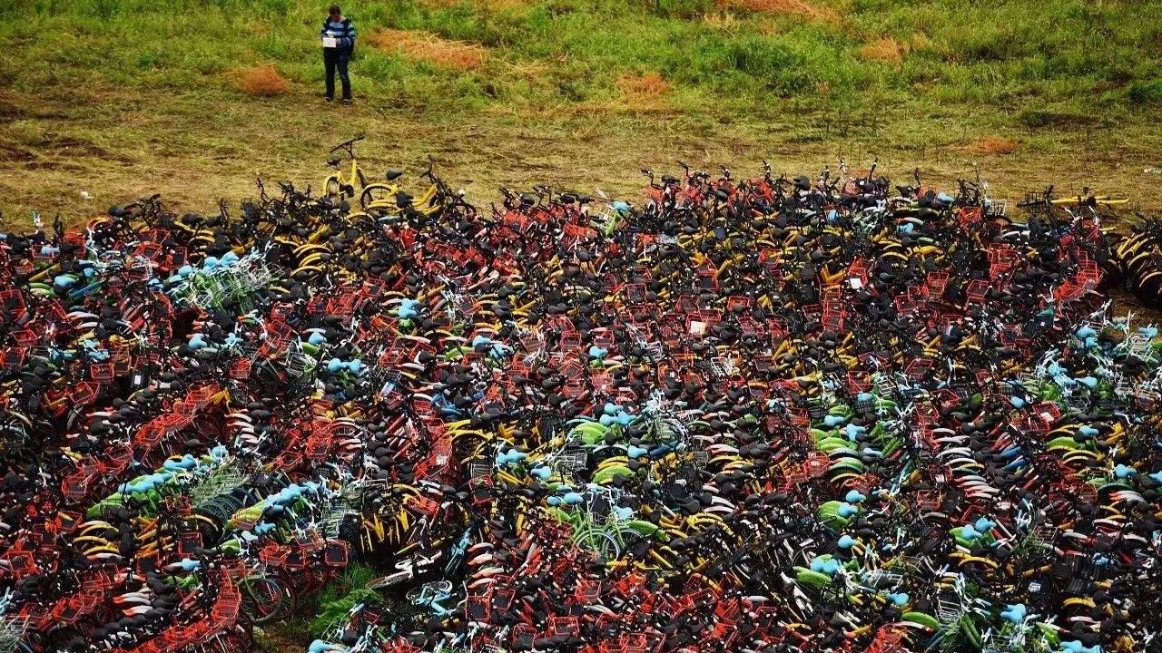 """王天露:谁发动了共享单车的""""绞肉机""""?"""