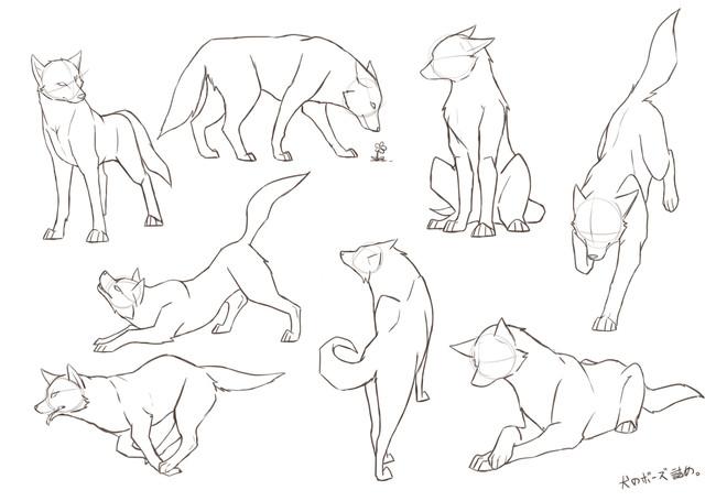超简单的猫与狗的画法,萌萌哒