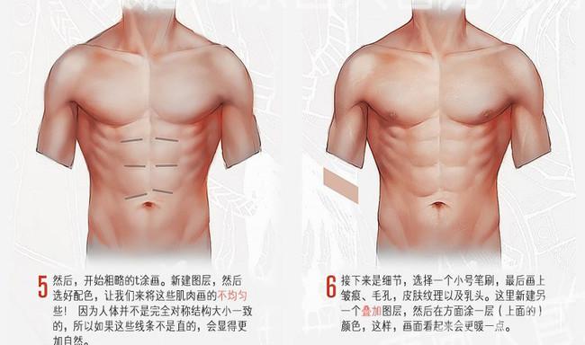男性躯干的画法教程,教你画出男性躯干漂亮的人鱼线