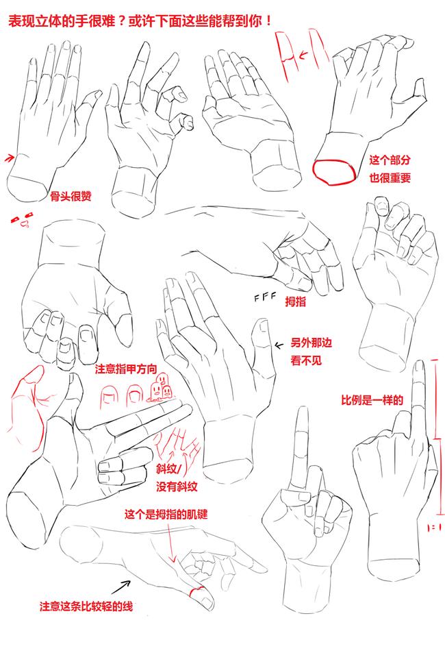 画手不要盲目去画,要学会理解运用哦!分享实用手部素材教程!
