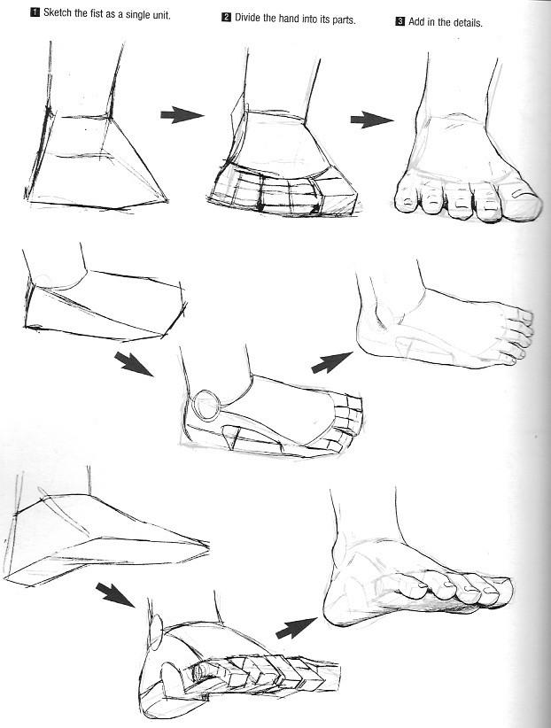 【推荐】绘画初学者应该怎么画脚部