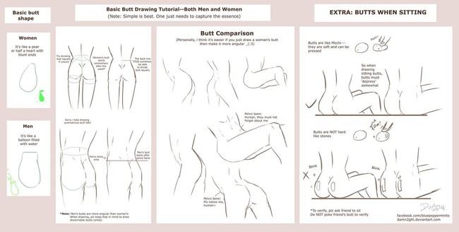 一组新手向身体比例、躯干部位等画法教程