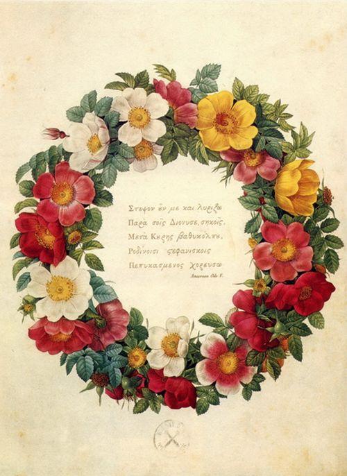 Rosever――一朵玫瑰,一个rosever的爱情故事!