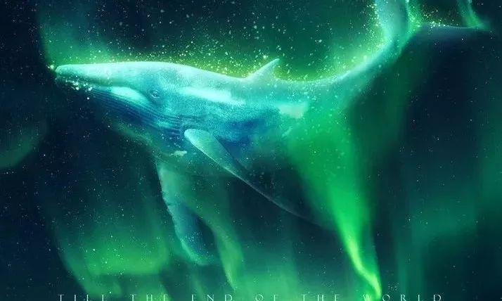 《南极之恋》之薛定谔猜想:女主角最后是死是活? - 狐狸·梦见乌鸦 - 埋骨之地