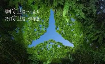 共赴绿途——携手奔驰3.10「植树公益行」圆满成功