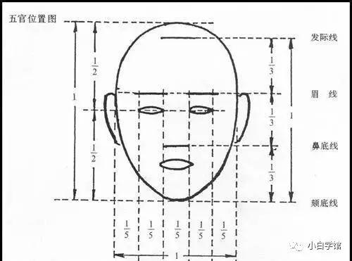 ① 日漫人物正脸比例画法图