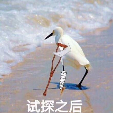 藤原拓海掉落山底遭受重伤,这个残忍的事实让