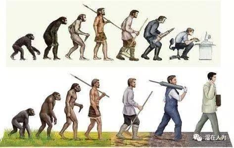 人类择偶史之后工业化时代