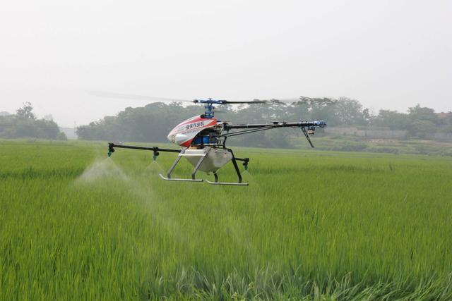 """阿里云ET大脑以AI赋能农业,马云要做一个现实版的""""QQ农场"""""""