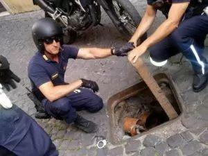 罗马小贩在井盖里藏300多把雨伞、650瓶水