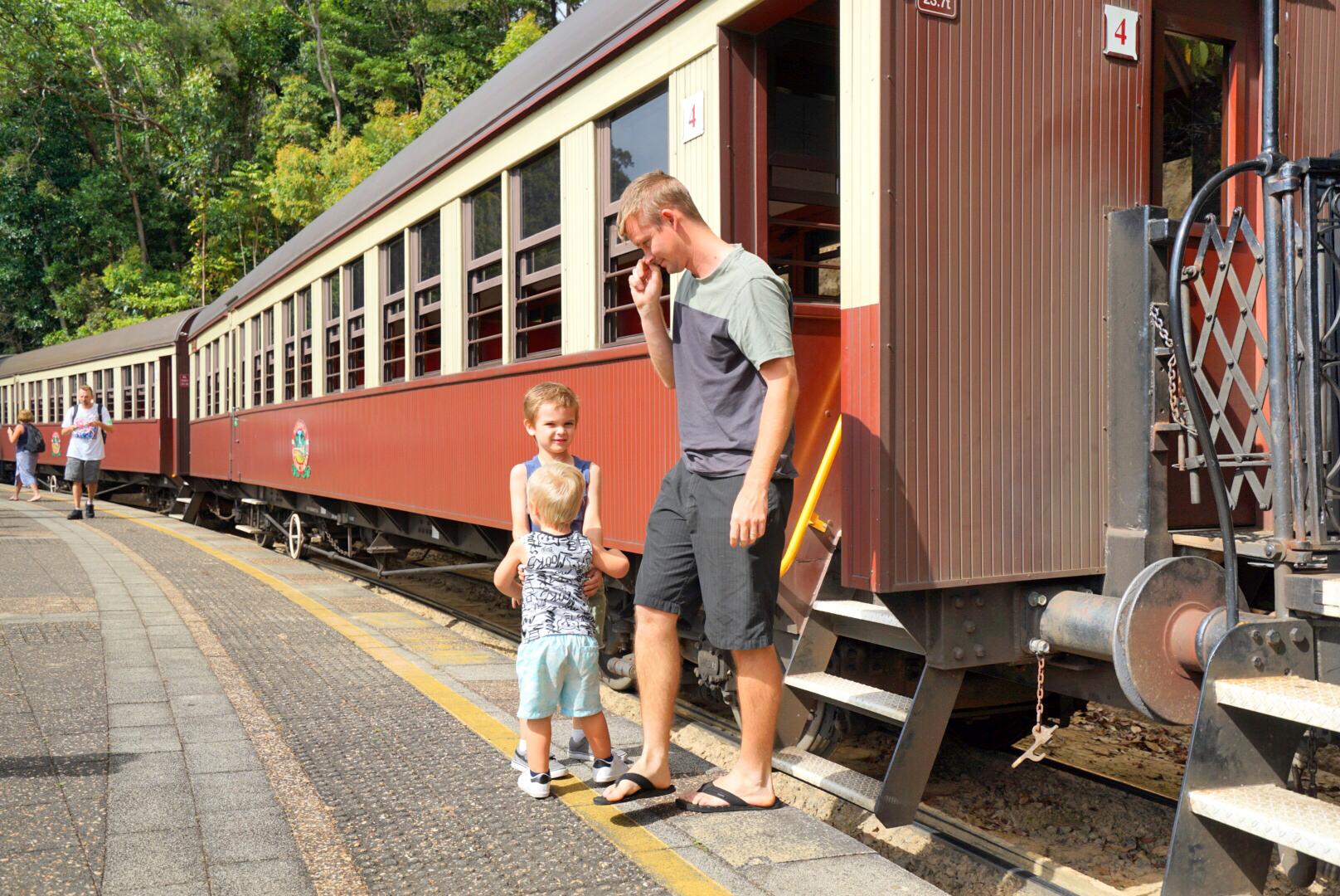坐上复古的小火车,到热带雨林中寻觅亿万年的罕见生物