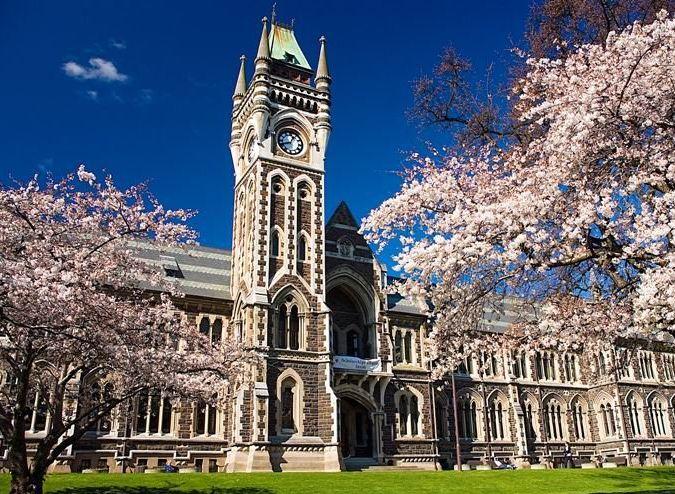新西兰奥克兰大学1