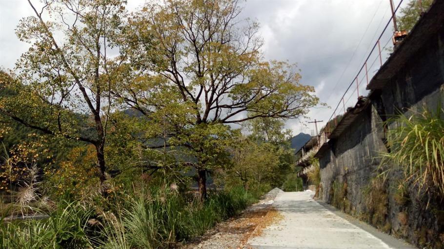 十里畬鄉綠道,十里彩帶飄飄