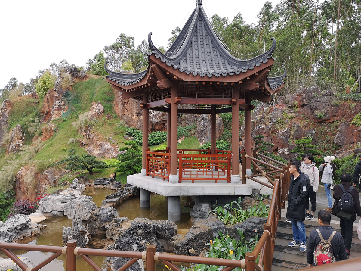 峰程7080集体翘班只为看第十二届中国(南宁)国际园林博览会 (5)