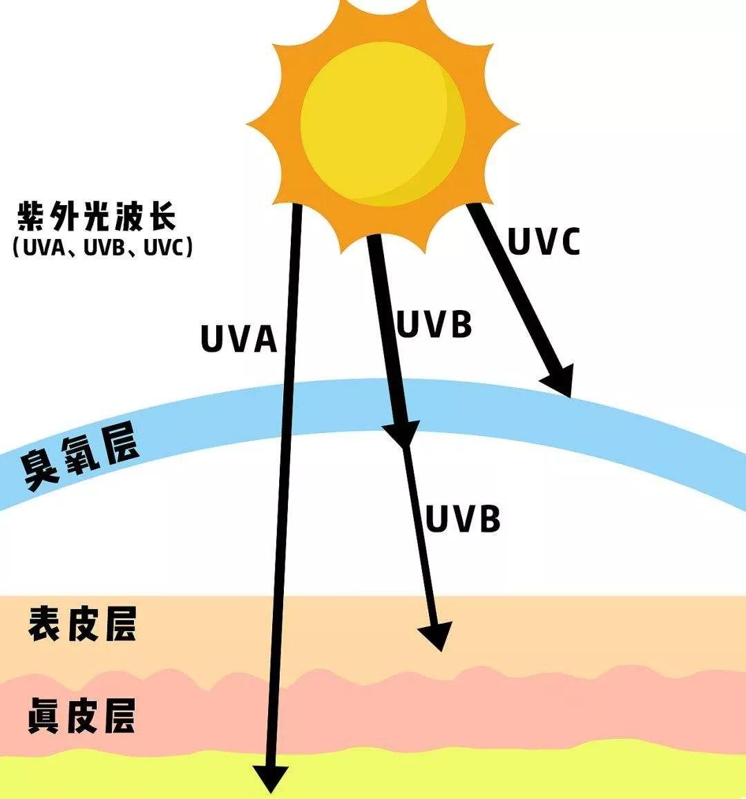 防護噴霧用在哪個步驟_隔離防護乳什么時候用_理膚泉噴霧使用步驟