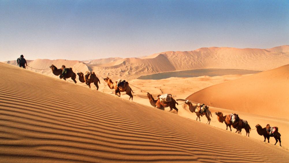 多彩内蒙古,亮丽风景线插图(3)