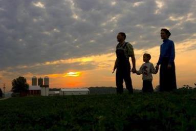 家庭农场来袭! 多部门联合印发指导意见部署实施培育计划