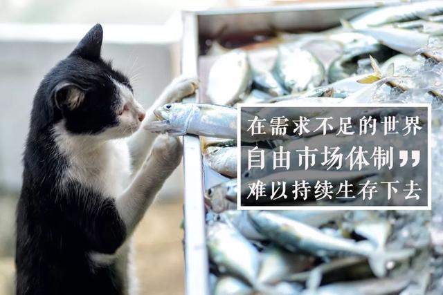 投资理财-新闻配图吴晓波:总统都说他讨厌,但还要约请他做经济顾问今日新闻(7)