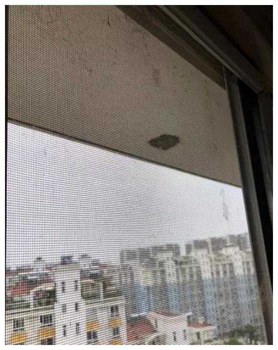不拆的纱窗怎么清洗,试了很多方法,还是最后一种管用(图2)