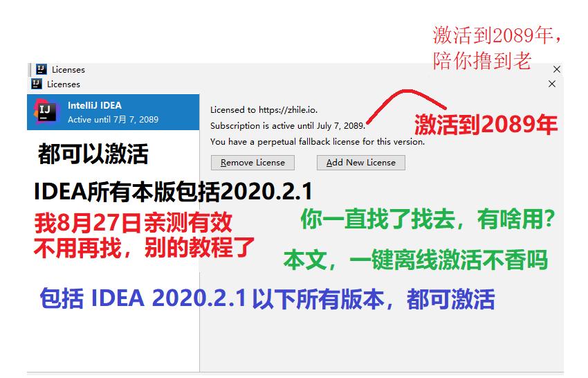 据说这个是可以撸到2089年的idea2020.2