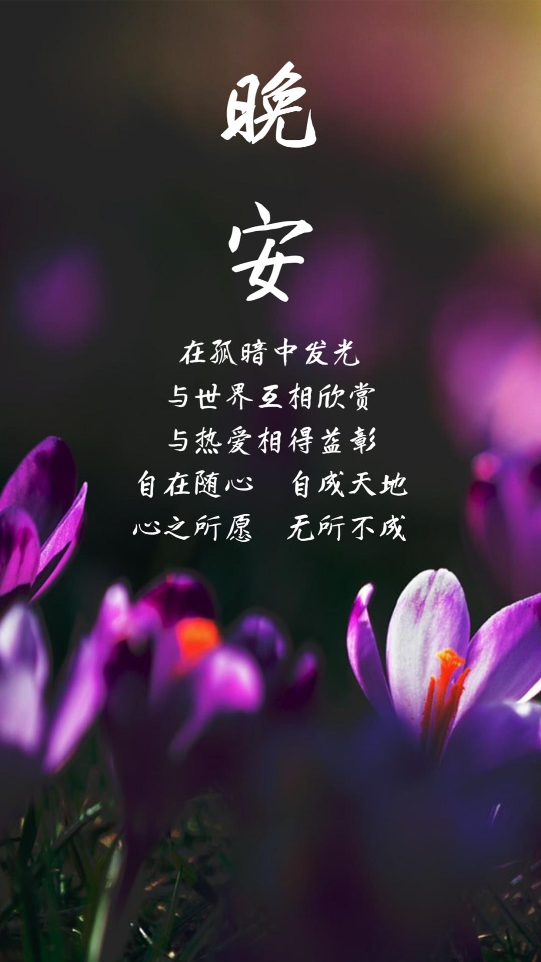 6月阳光暖心的早安心语文字,优质句子,图片精美