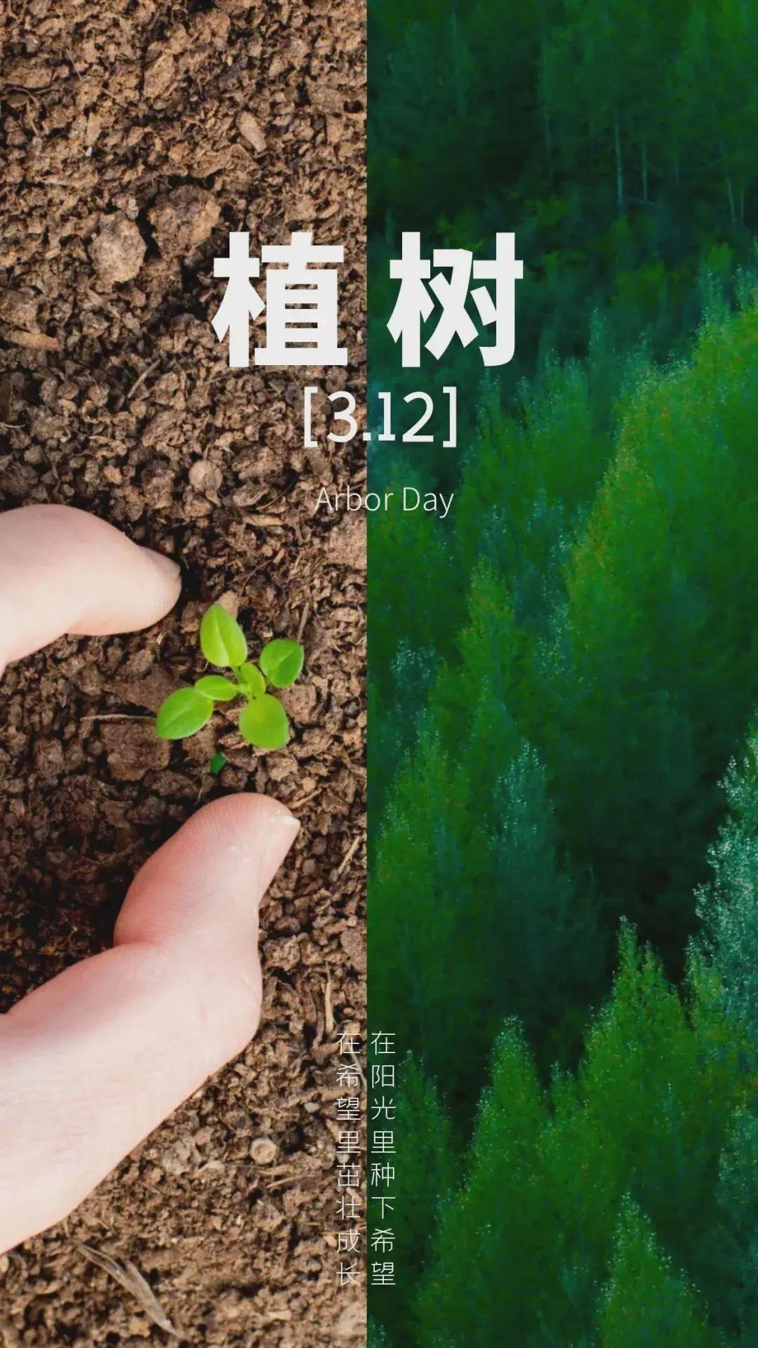 植树节图片配图,3.12植树节朋友圈祝福问候文案