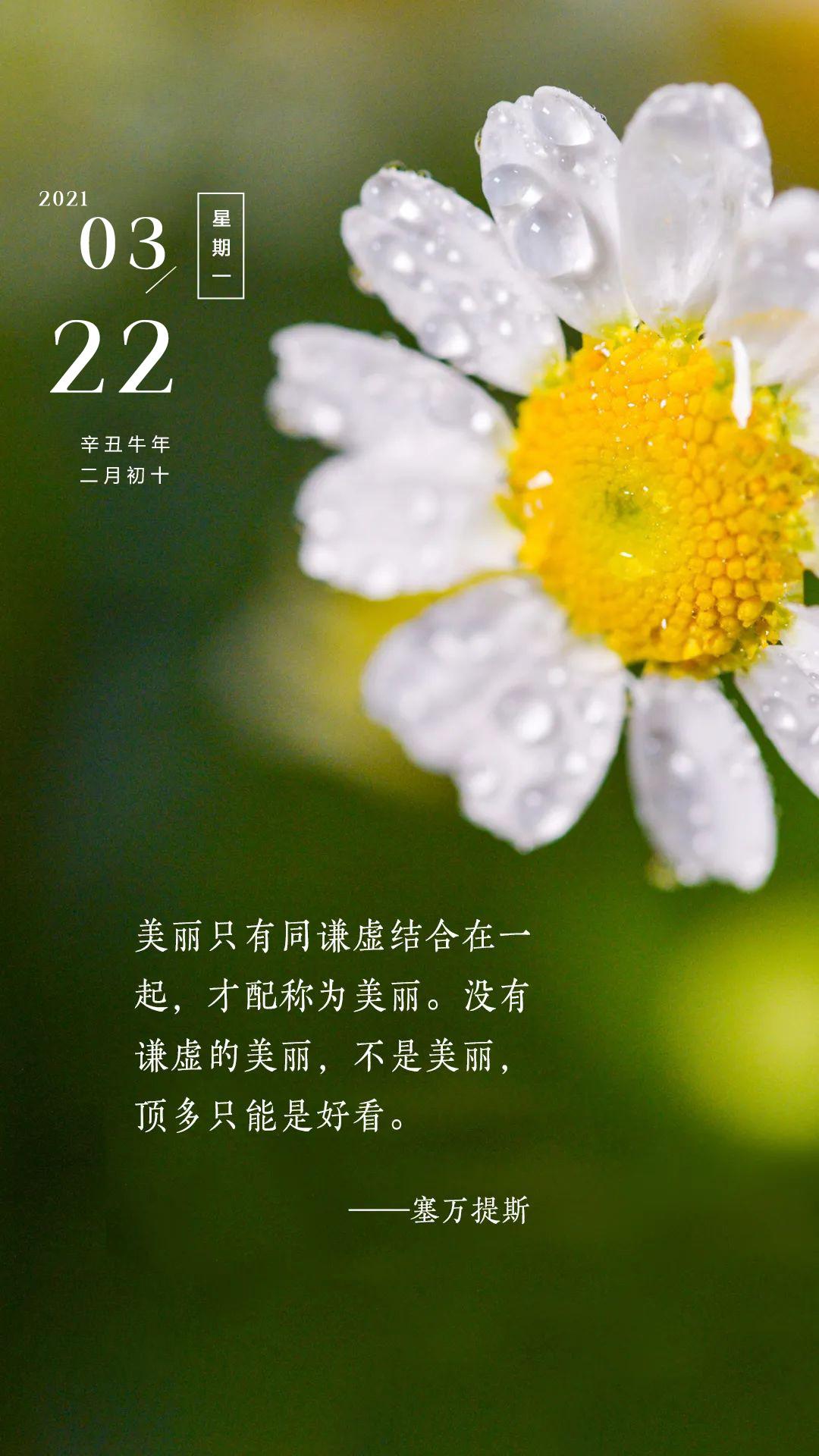 新周正能量早安心语图片带字,周一励志奋斗句子