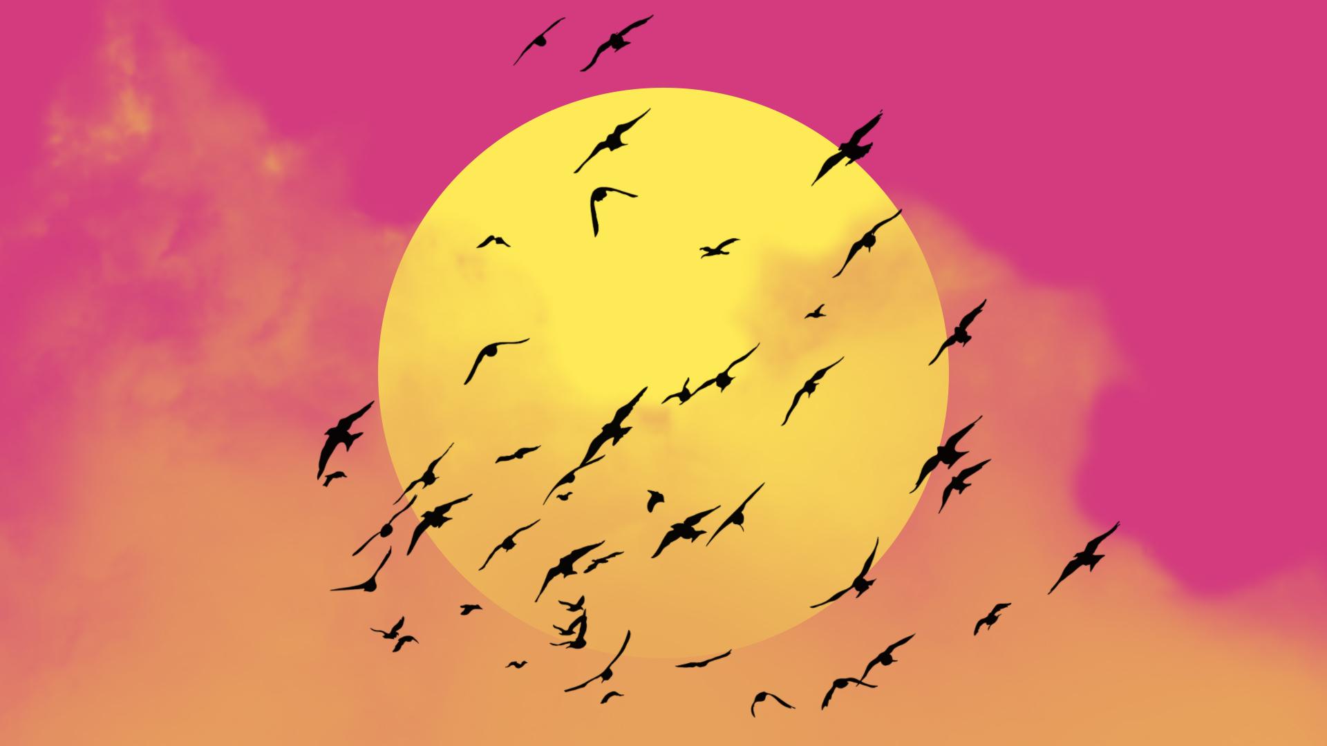 早晨发朋友圈的阳光句子图片,正向有能量,认真努力