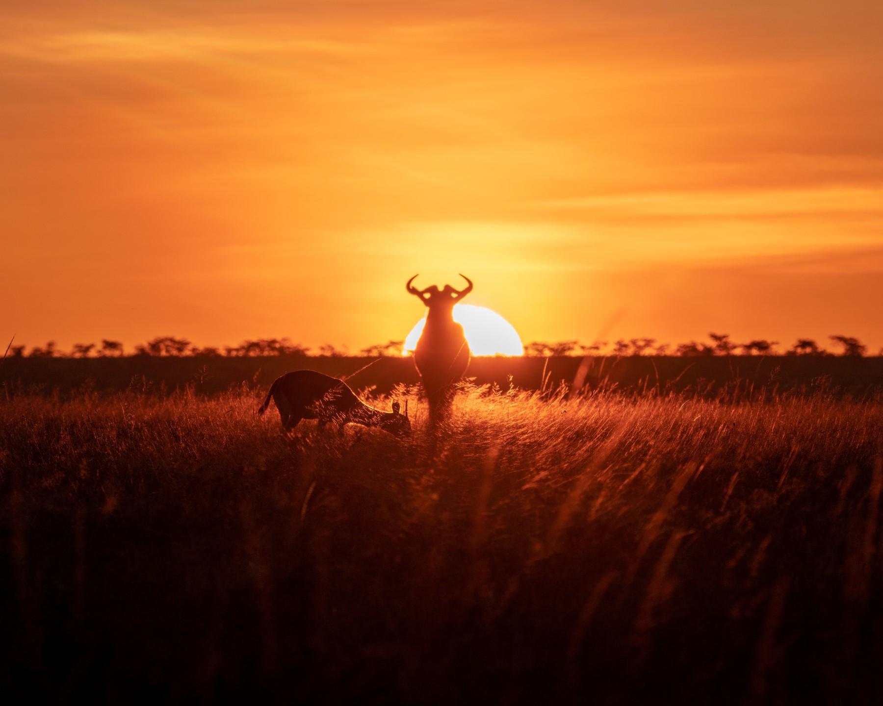 充满能量的早安图片语录,阳光激励早安语