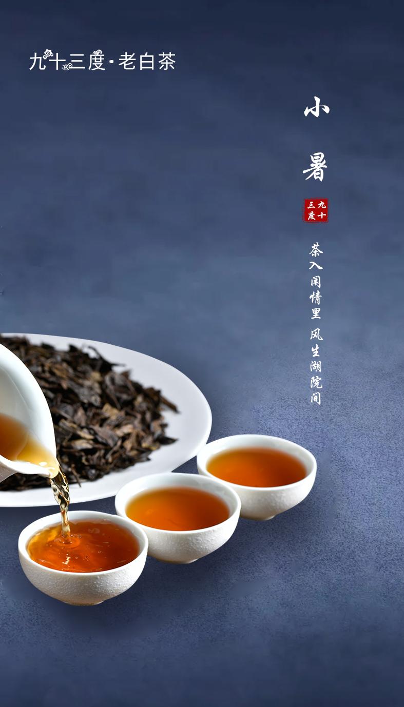 九十三度老白茶——一杯白茶下肚,夏日也顷刻温柔