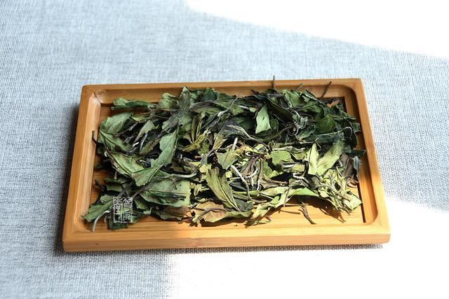 九十三度老白茶 | 怎样冲泡的白茶才更好喝?