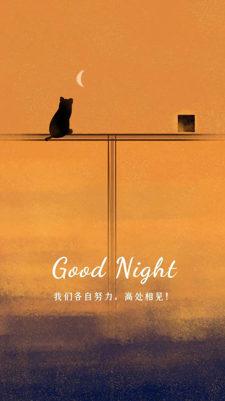 睡前发朋友的晚安心语文案,很经典,很精辟