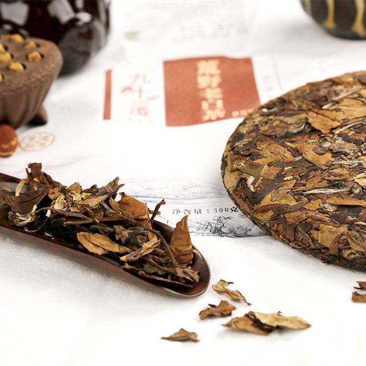 九十三度老白茶 | 传统白茶与新工艺制作的白茶,有什么区别